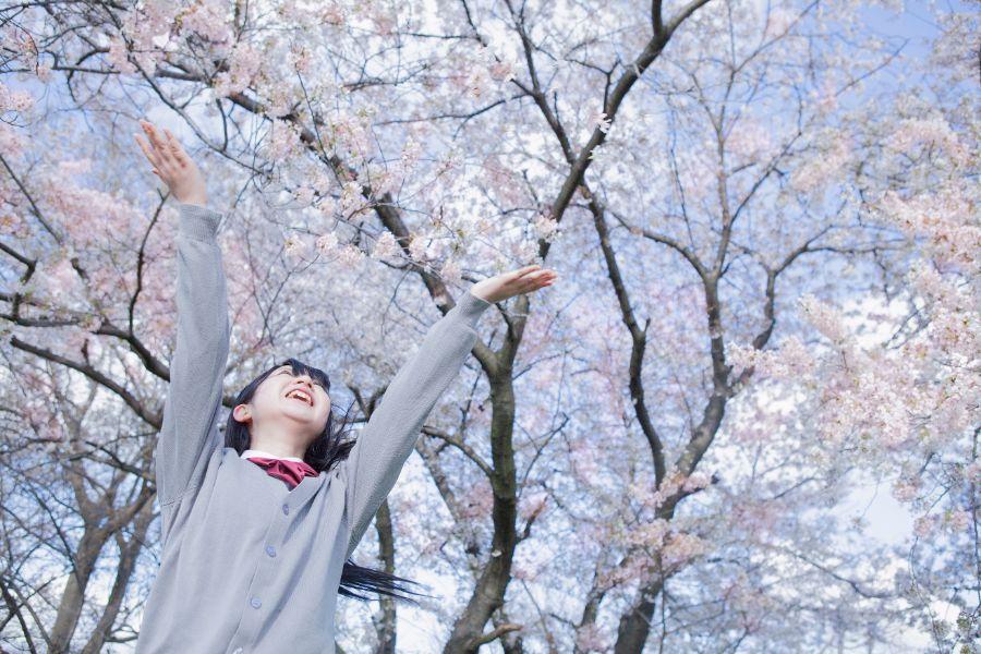 桜の木の下で喜ぶ女子高生